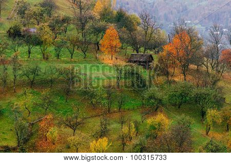 Autumn on the slopes of the mountain village. Beauty in nature