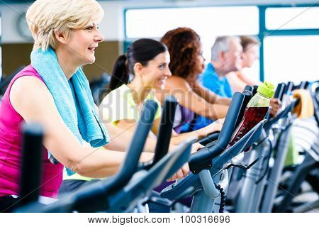 Men and women doing fitness spinning for sport, group of young and senior people