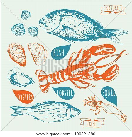 Vector illustration with Hand-drawn sketch of seafood.