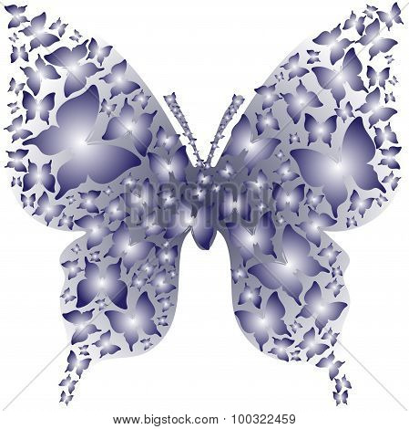 Stencil asymmetry blue outline butterfly from butterflies