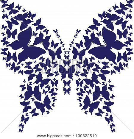 Stencil symmetry outline butterfly from dark blue butterflies