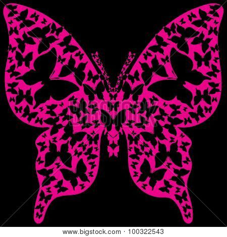 Stencil symmetry outline violet butterfly from black butterflies