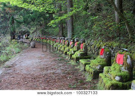 Japan Trail