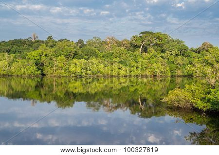 Amazon forest and black river, cloudy sky