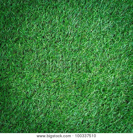 Artificial Turf Grass Background And Texture