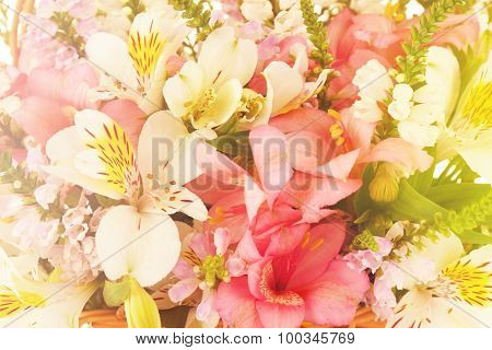 Beautiful floral arrangement close up