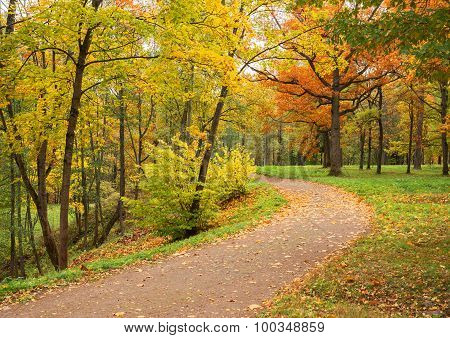 Autumn Landscape. Park In Fall. Golden Autumn.