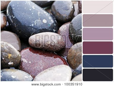 Wet sea pebbles and palette of colors