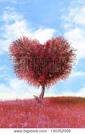 Red tree in heart shape, outdoors