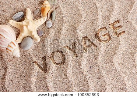 Voyage concept. Beach with a lot of seashells and starfish