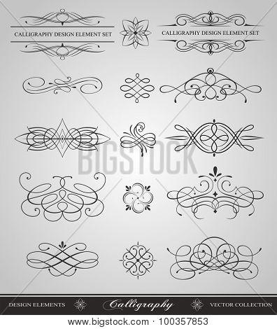 Calligraphy swirls vector design elements
