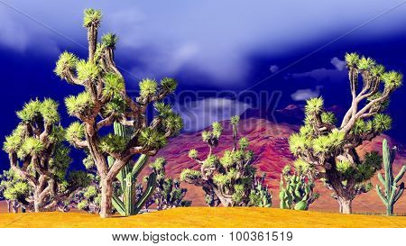 Joshua trees on desert