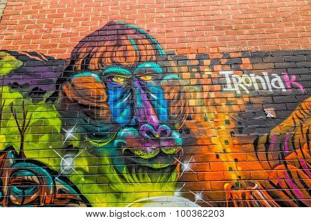 Melbourne graffiti monkey face