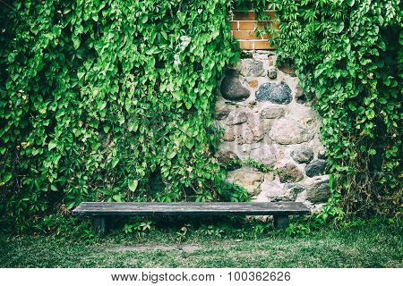 Wooden Bench Near Old Stone Wall Covered With Ivy Leaves