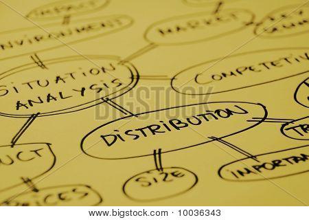 Distribution Analysis Graph