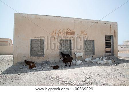Oman building