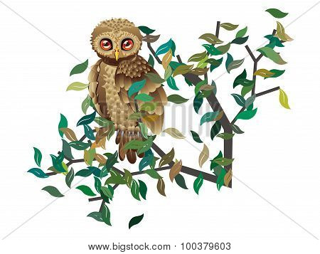 Owl On Branch With Leaves