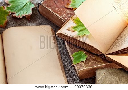 Open Vintage Book With Blank Pages And  Leaves Close Up