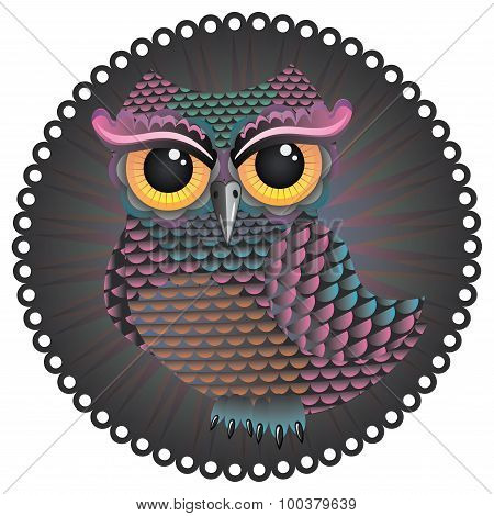 Pink And Blue Color Owl