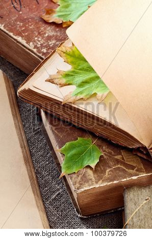 Vintage Book With Blank Pages And With Autumn Leaves Maple