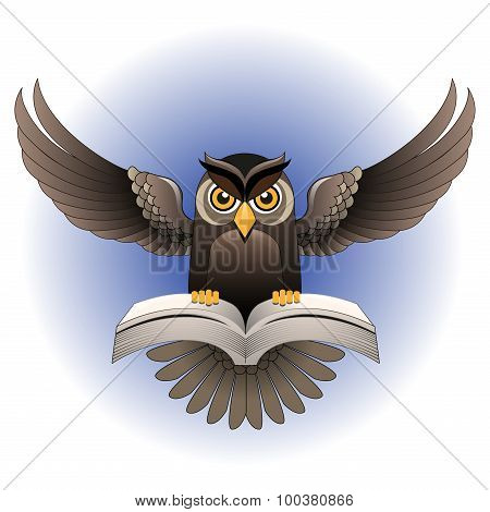 Vector, Brown Owl fly with the book