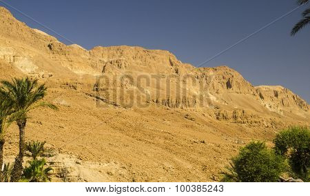 Orange Mountains In Judean Desert