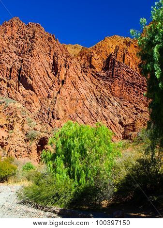 Red rocks of Tupiza