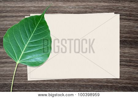 Bodhi leaf and and paper on wood background