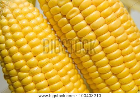 Several Ears Of Corn On A  Surface