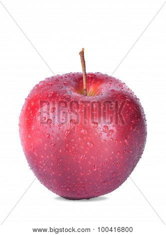 red juicy Apple on a white background