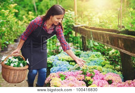 Pretty Young Nursery Owner Pointing To The Flowers