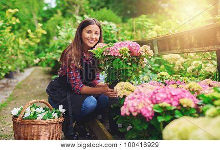 Happy Young Gardener Selecting Hydrangea Plants