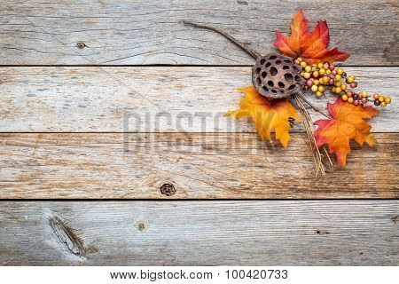 grunge barn wood  background with colorful fall decoration