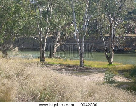 By the Edwards River, Deniliquin, NSW Australia