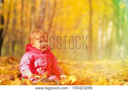 cute little girl in autumn leaves