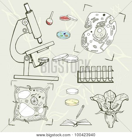 Biology education equipment, cells, sketch icons