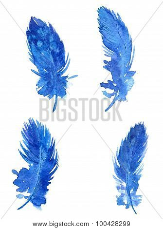 set of blue plumes