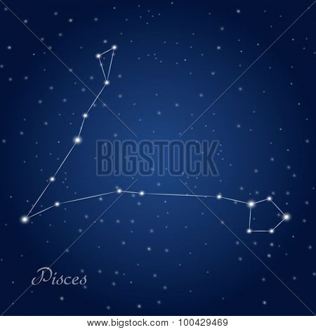Pisces constellation zodiac