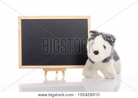Close up of blackboard and toy dog on white background isolated