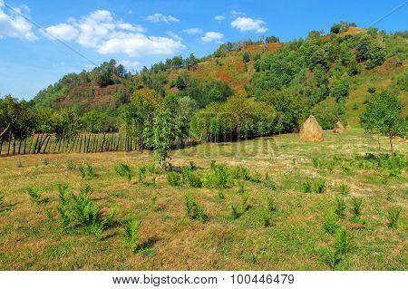 Wonderful autumn hillside in Transylvania, Romania