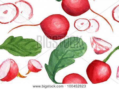 Watercolor radish seamless background pattern