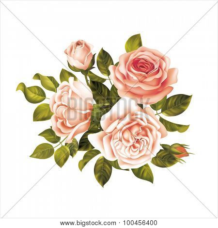 Bouquet with white and pink roses. Vector illustration.