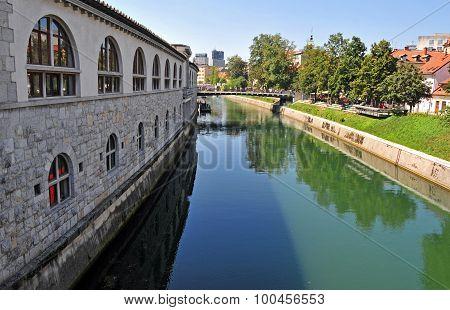Ljubljanica river and Butcher's bridge in the background, Ljubljana, Slovenia