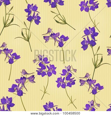 Seamless pattern with real herbarium flowers in purple colours on beige strips background