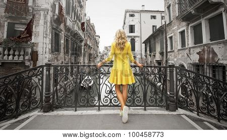Elegant lady standing on the bridge