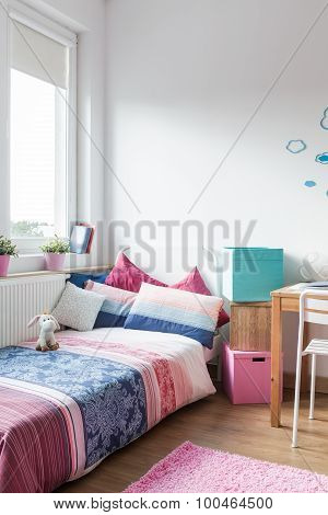 Teen Girl Room