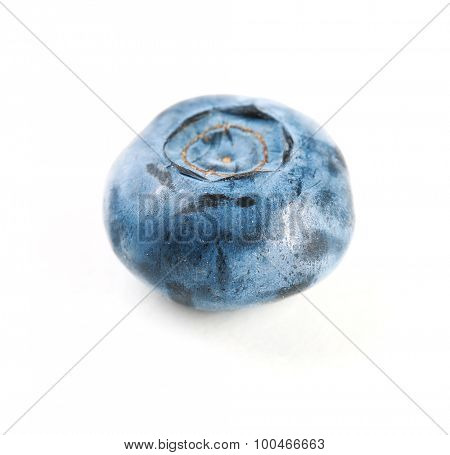 Fresh blueberry isolated on white