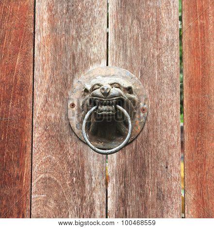 door knocker, A lion head doorknob on a wood plate old door