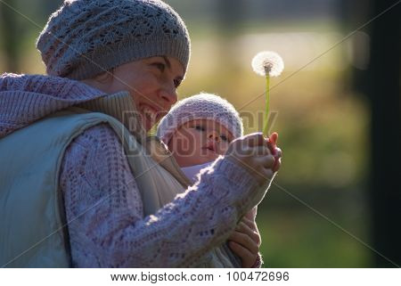 Mom and baby looking at the dandelion on outdoors
