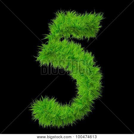 Concept or conceptual green grass, eco or ecology font, part of a set or collection isolated on black background